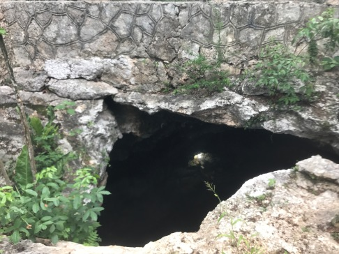 View from the top of X'keken. There is a small opening at the top on the cenote that allows for a thin stream of light to enter the cave.